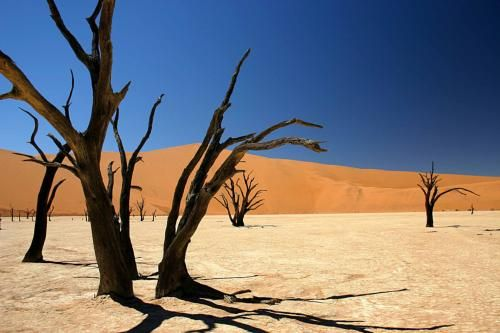 Google Image Result for http://www.safari-namibia.co.uk/wp-content/uploads/2011/01/Namibia.jpg