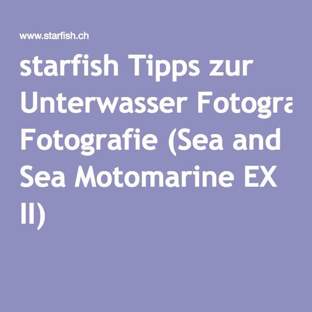 starfish Tipps zur Unterwasser Fotografie (Sea and Sea Motomarine EX II)