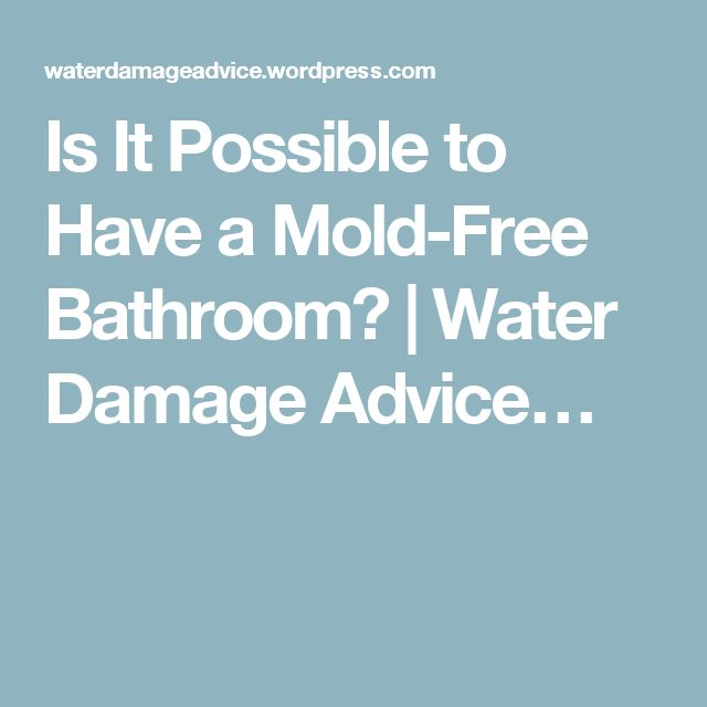 Is It Possible to Have a Mold-Free Bathroom? | Water Damage Advice…
