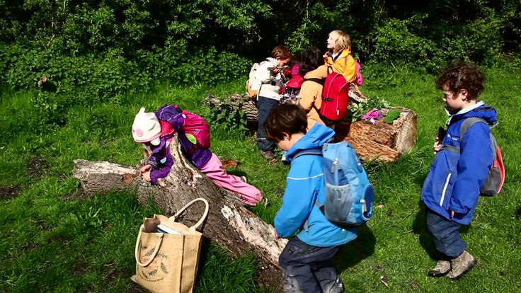#12 Thanks to Sven Mattes and Cambridge Steiner School Kindergarten Woodland Programme for their entry to our video competition.