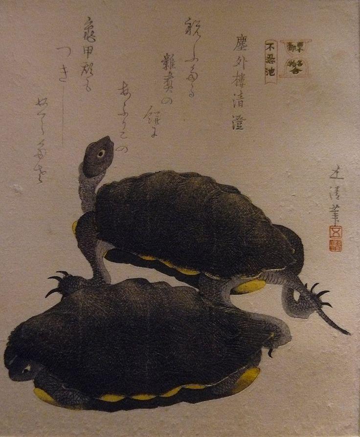 """GOSEI Hotei,1810 - Deux Tortues (Guimet) - 0  -  TAGS : art painter details détail détails detalles painting paintings peinture peintures 19th 19e """"peinture 19e"""" """"19th-century paintings"""" """"19th century"""" """"details of painting"""" """"details of paintings"""" tableaux paintings Guimet Gosei Hotei """"Hotei Gosei"""" """"Epoque Edo"""" Edo """"Deux Tortues"""" tortue turtle animal nature Japon Japan"""