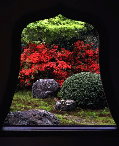 Kirishima Azalea, on the grounds of Tentoku-in, a subtemple of Tofuku-ji Japan