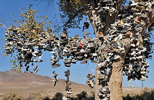 Shoe Tree; off U.S. 50 in Nevada - Top 50 American Roadside Attractions - TIME