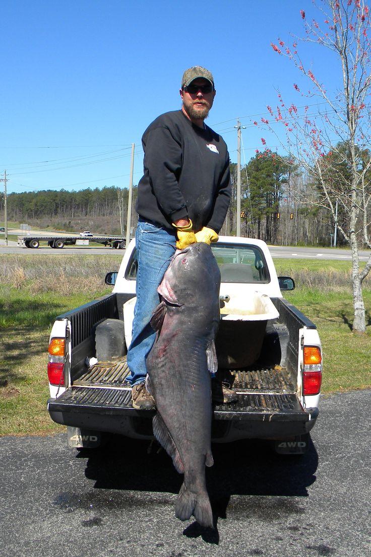 1000 images about alabama lakes on pinterest alabama for Fishing lakes around me