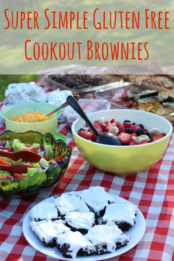 Pillsbury gluten free brownies for a family cookout
