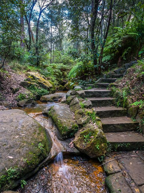 Lapstone Hill steps on the edge of the Blue Mountains, Australia (by Darren.Nightingale).