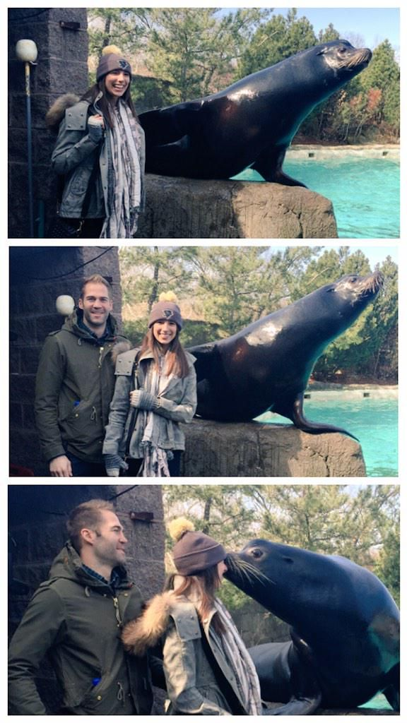 Toronto Maple Leafs: Daniel Winnik and his wife, Taylor, with Hawk, a seal, at the Pittsburgh Zoo