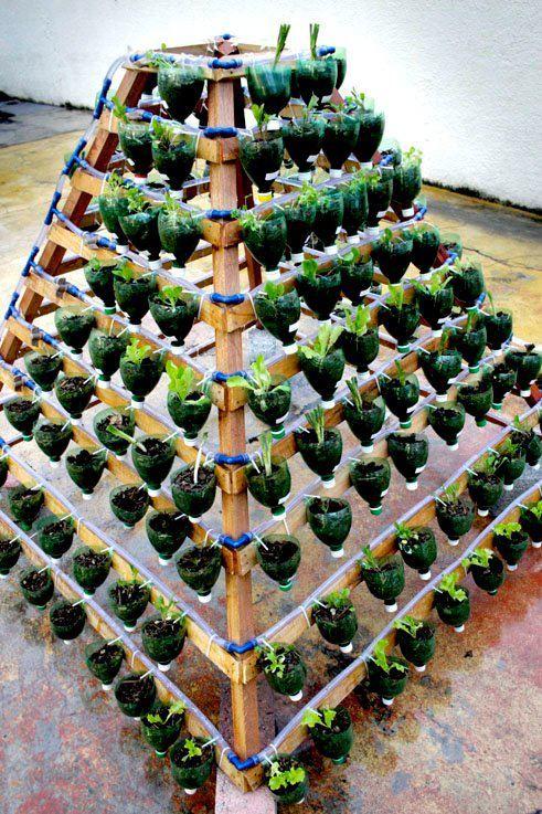 soda bottles into a garden