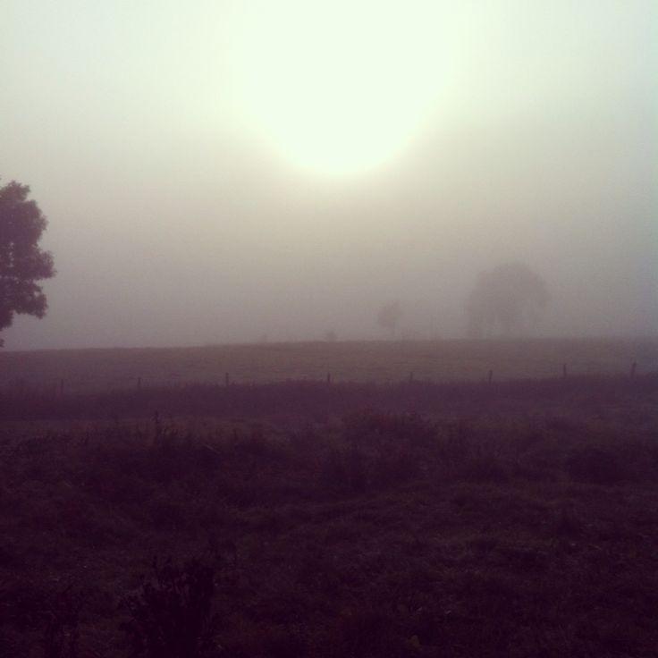 Haute-Loire, Auvergne, France, Fog