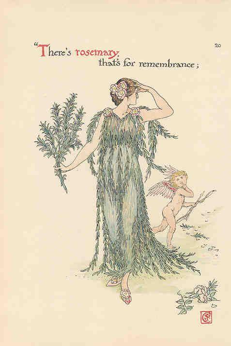 Flowers from Shakespeare's Garden  Rosemary