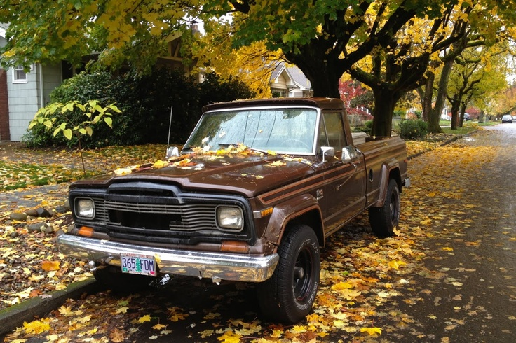 1979 Jeep J10 Gladiator Pickup  Love The Leaves And The