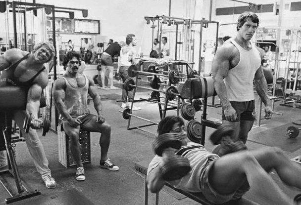 Image result for golden era bodybuilding