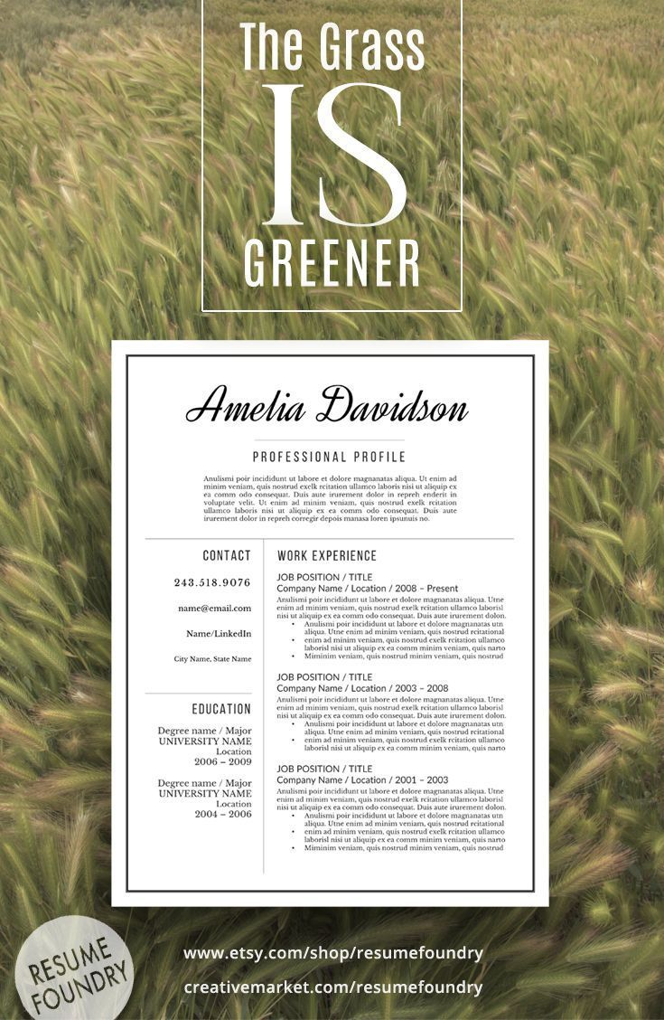 Professional Resume Template the Amelia 43