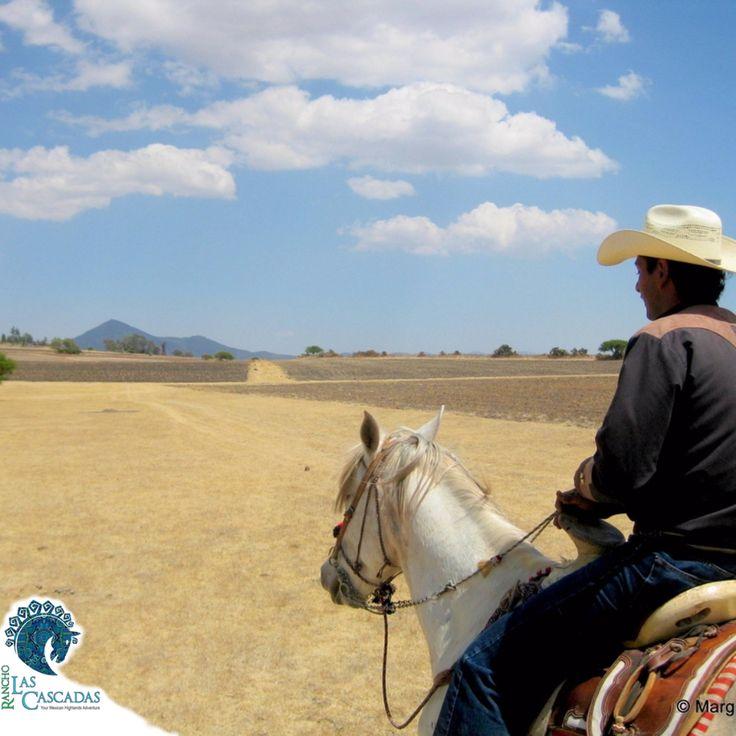 Open range horseback riding...as far as the eye can see!!!
