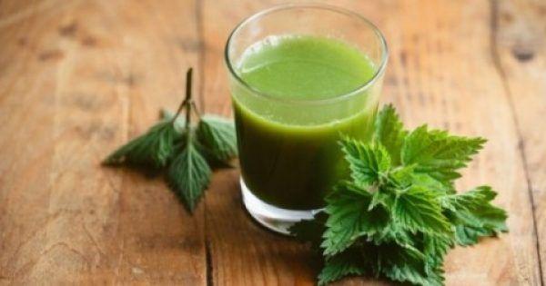 Η τσουκνίδα είναι γνωστή από την αρχαιότητα για τις θεραπευτικές της ιδιότητες. Τα φύλλα της τσουκνίδας μπορούν να χρησιμοποιηθούν στο φαγητό, στις σαλάτες