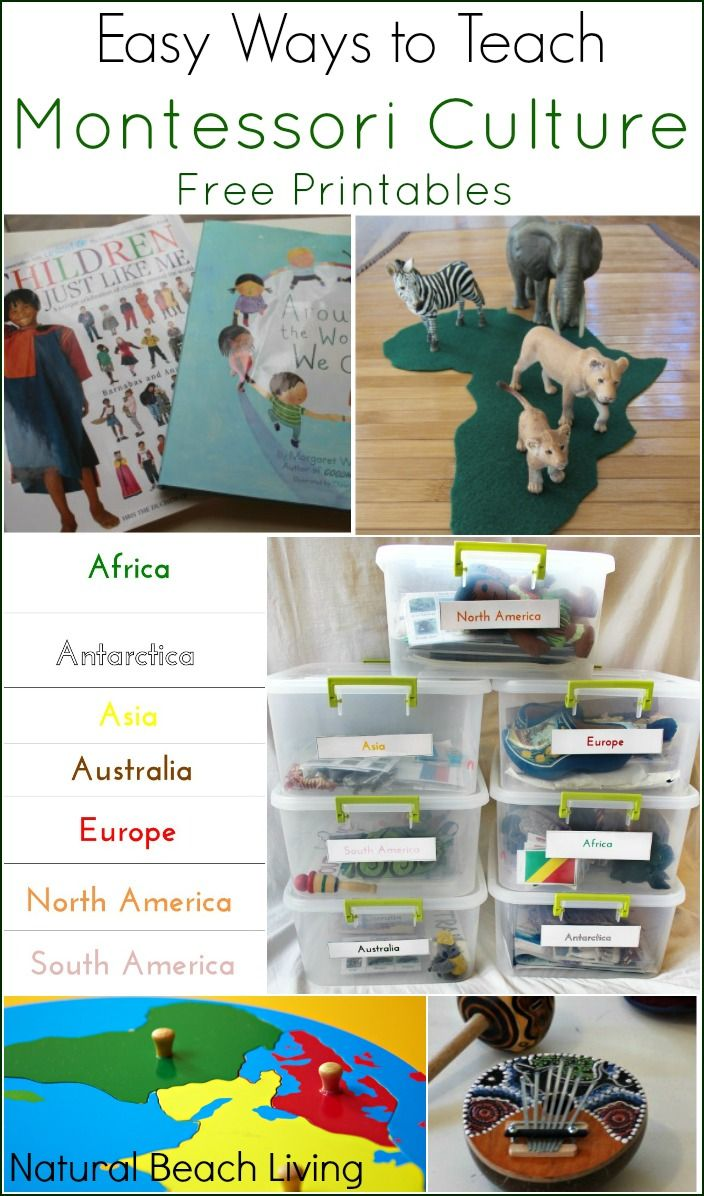 Easy Ways to Teach Montessori Culture with Free Printables, Continent Boxes, Multicultural Books and Activities including Zoology, Science, Botany, Geography, History, Art and Music