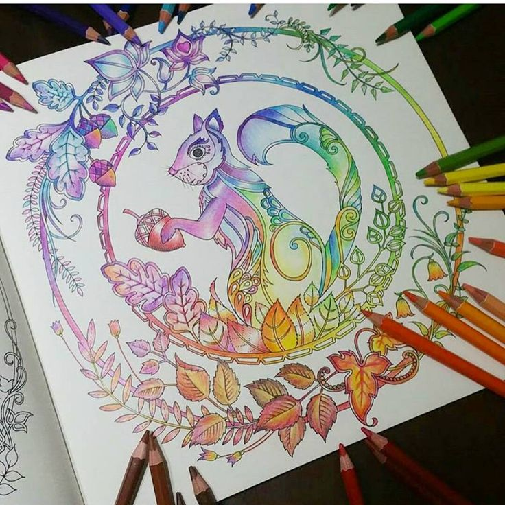 Mandala Milliemarotta Johannabasford Secretgarden Jardimsecreto FlorestaEncantada Enchantedforest Adultcoloringbook Jardimdosbroder OceanLost