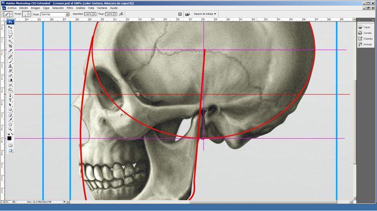"""Proporciones y estructura. Los primeros pasos para construir """"la cabeza"""". http://robledoarte.me/cursos"""