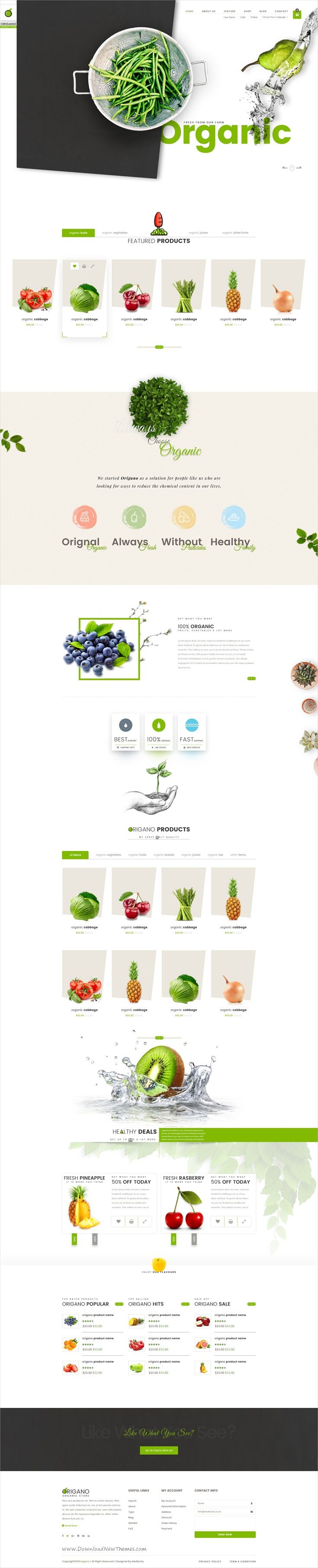 Origano is a beautiful design #PSD template for #organic, food, farming #store eCommerce website with 6 homepage layouts and 39 organize PSD pages download now➩ https://themeforest.net/item/origano-organic-store-psd-template/19478208?ref=Datasata
