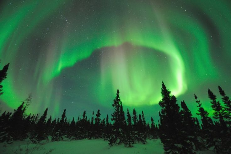 Von Alaska bis Finnland: Bühne frei für die Polarlicht-Show