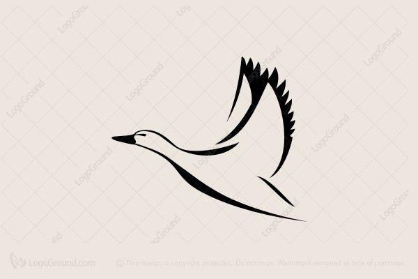Logo for sale: Duck In Flight Logo