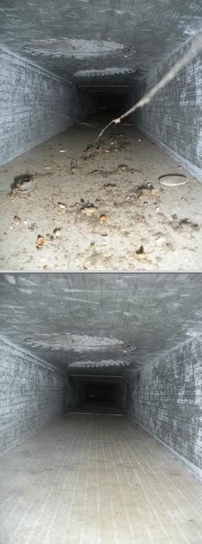 Best 25 Clean Air Ducts Ideas On Pinterest Duct