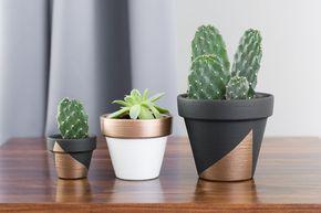 DIY: Comment donner une allure moderne aux pots de fleurs en terre cuite | BricoBistro