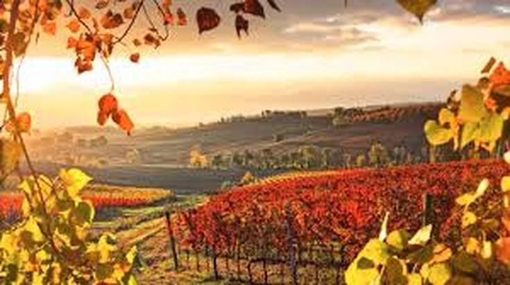 Italy - five places that language unlocks.. - http://www.vllc.com.au/travel-blog/italy-five-places-that-language-unlocks