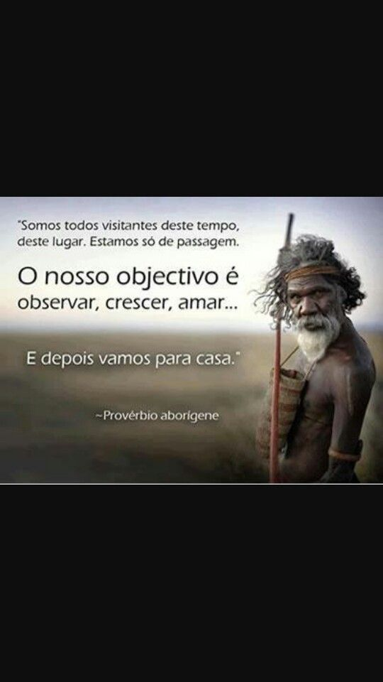 Sabedoria indígena