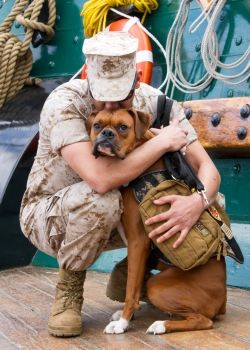 Sgt. Valdez and his dog, Midas...  Dogs on Deployment is a non-profit organization giving military members leaving on deployment a chance to find a willing home to foster their pets while they fulfill their service duty.