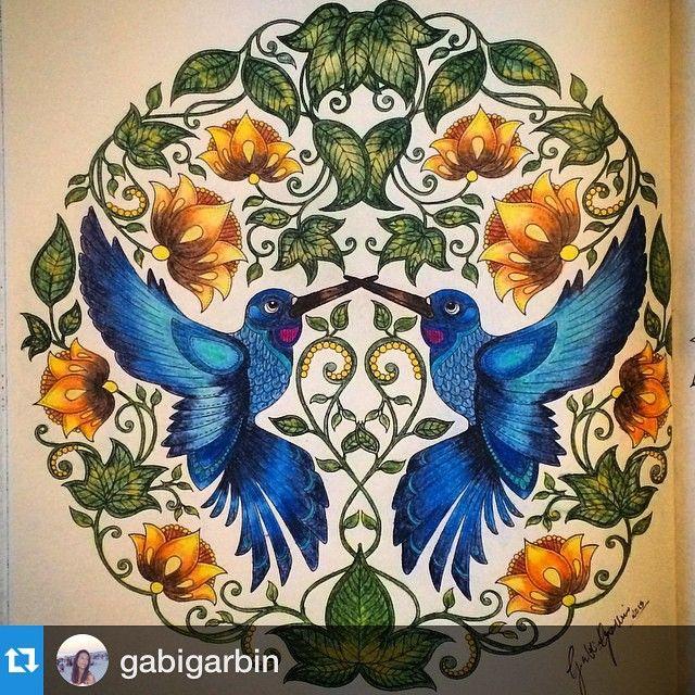 25 Best Ideas About Imagem De Beija Flor No Pinterest