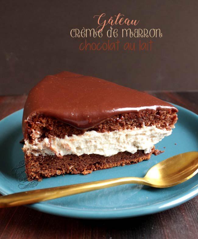 gateau chocolat marron