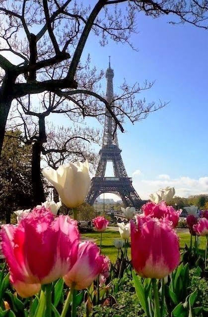 Eiffel Tower , Paris - France