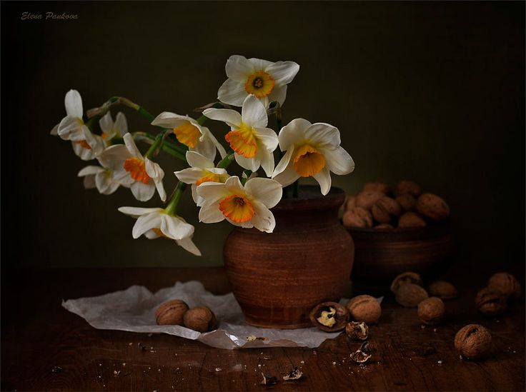 Daffodils and walnuts by Elena Pankova on 500px