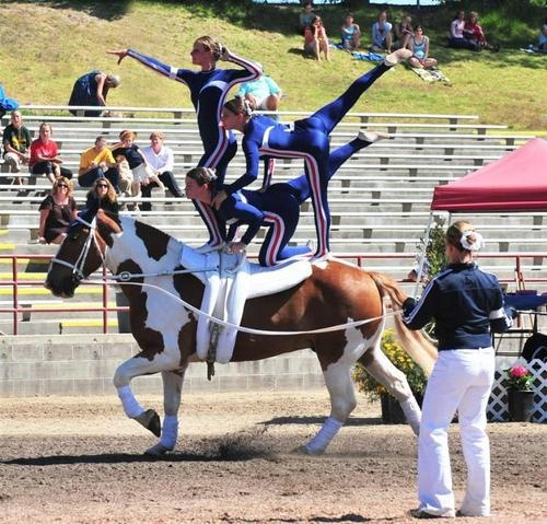 vaulting- World Equestrian Games in Lexington, KY