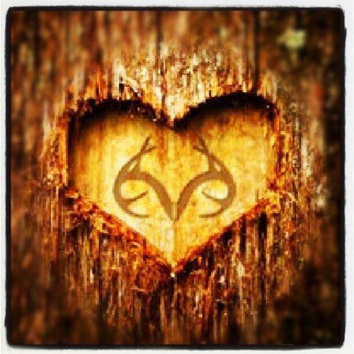 Realtree forever