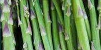 How to plant asparagus?