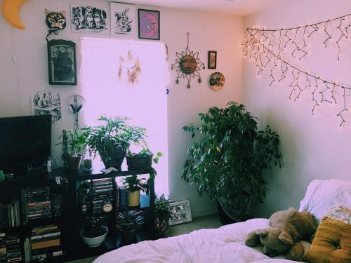 molly adrian mcveigh bedroom college dorm pinterest bedrooms and
