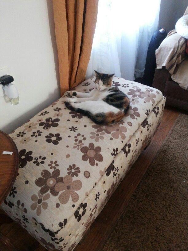 Sofa :)