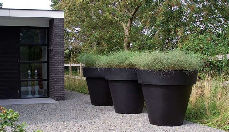 Identifying the key elements to create a garden in typical modern Dutch garden style.