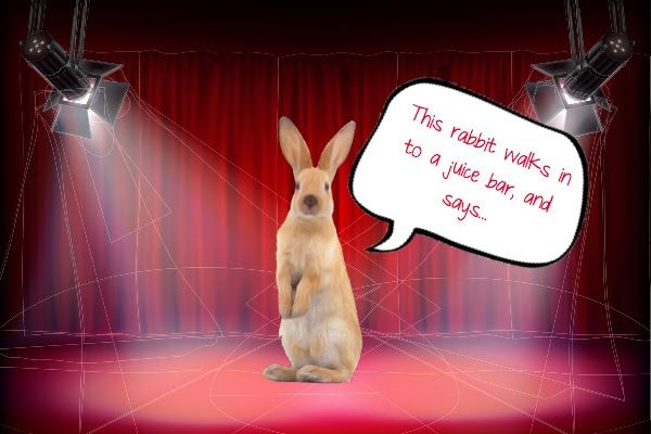No 7 Silly Rabbit Joke: Did you hear what happened to the Energizer Bunny?  He got arrested for battery. (via the hoomins of Small Pet Select)