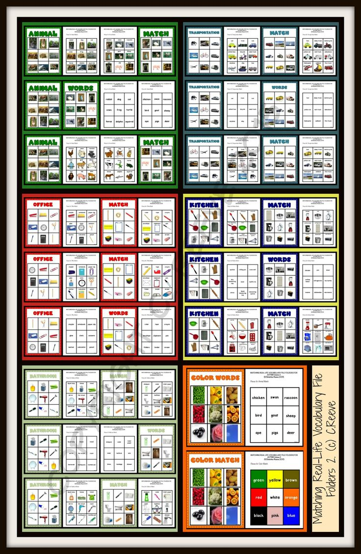 This is a set of file folders that focuses on matching picture to picture (identical), picture-to-picture (non-identical) and picture-to word for a variety of photographs of real-life, functional items. These activities are designed for the students to use them in independent work to generalize and reinforce skills taught with explicit instruction. $5