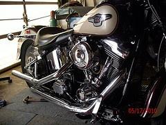 98 Annv. Fatboy slammed down, motored up beast!