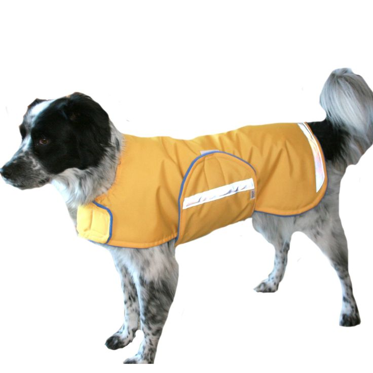 Winter Dog Coat, custom dog coat, waterproof dog coat, adjustable dog coat with hook and loop closures, coat for dogs with reflective strips by madebyde on Etsy https://www.etsy.com/listing/216978073/winter-dog-coat-custom-dog-coat