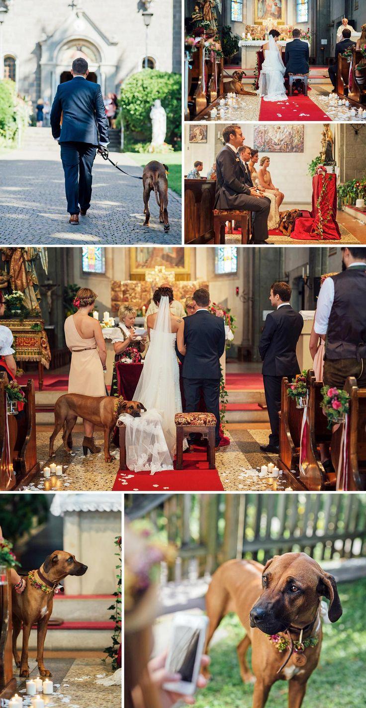 Fotos vom Hund zur Hochzeit. Fotos: © Paul Träger