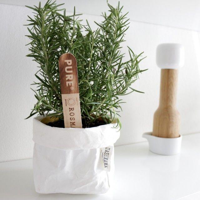 Les 851 meilleures images du tableau en cuisine les herbes aromatiques sur pinterest - Les herbes aromatiques en cuisine ...