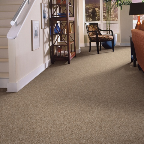 People And Places Carpet Flooring Shaw Floors