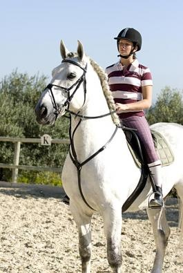 http://www.lovasplaza.hu/193-versenyzeshez/89-hunter-szugyelo/