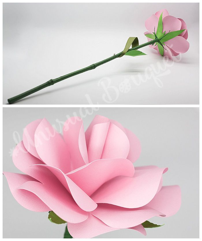 La nuova moda del 2017? Un bouquet da sposa con un solo fiore, una rosa con stelo lungo.  www.bouquetalternativi.it info@bouquetalternativi.it  #bouquetsposa2017 #bouquetsposa #bouquetalternativi #sposa #bouquetfioresingolo #bouquetrose