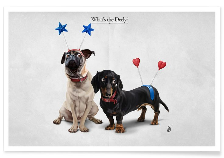 What's the Deely? as Premium Poster by Rob Snow | Creative | JUNIQE  art | decor | wall art | inspiration | animal | home decor | ideas | gift